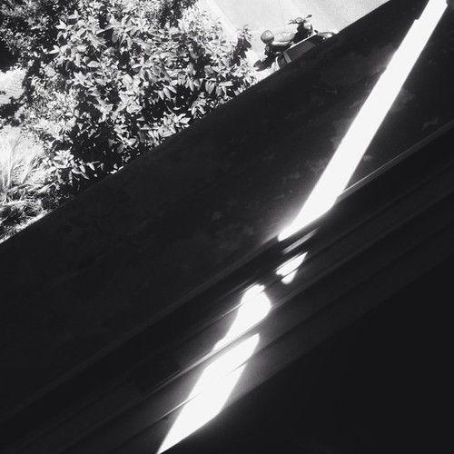 Late #goodmorning (presso Villa Acinonyx)