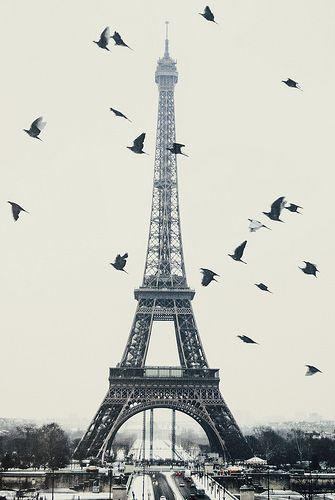 Parijs, Frankrijk. Ben als verrassing meegenomen omdat we 1 jaar waren getrouwd!