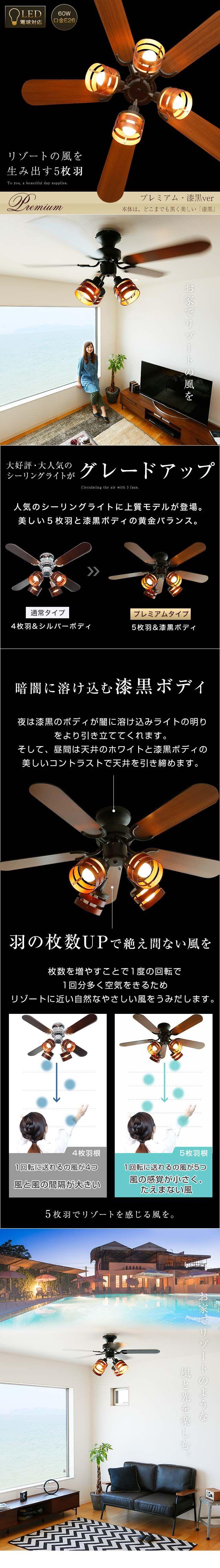 勾配天井を引き立たせる照明 リビング 吹き抜け 照明 コーニス照明