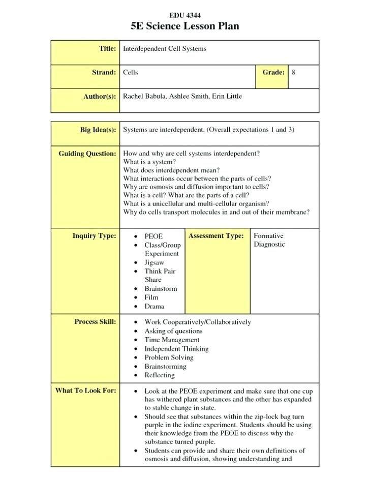 Reggio Emilia Lesson Plan Example E Learning Lesson Plan Template