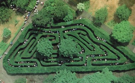 The oldest hedge maze in Britain is the Hampton Court maze; not so huge, perhaps, but amazing considering that it was built in 1689 and is written about in novels and poems. Hundreds of thousands of people visit this maze that was created during the time of William of Orange.