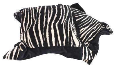 Zebra Print Crafts for Teens.