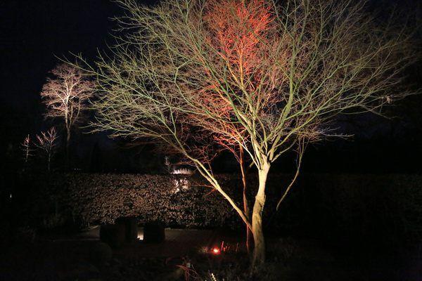 Beleuchtungsprobe Fur Den Garten Und Landschaftsbau Jens Lutge In Kemme Garten Landschaftsbau Landschaftsbau Aussenbeleuchtung