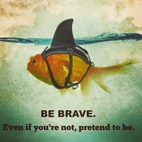 Be brave is the vitamin of your brain  Ser valiente es la vitamina de tu cerebro #motivation #motivation #startup #millonaire #millonarios #millonairedreams #sueñosmillonarios #lifestyle #startuplife  #freemind #entrepeneur #emprender
