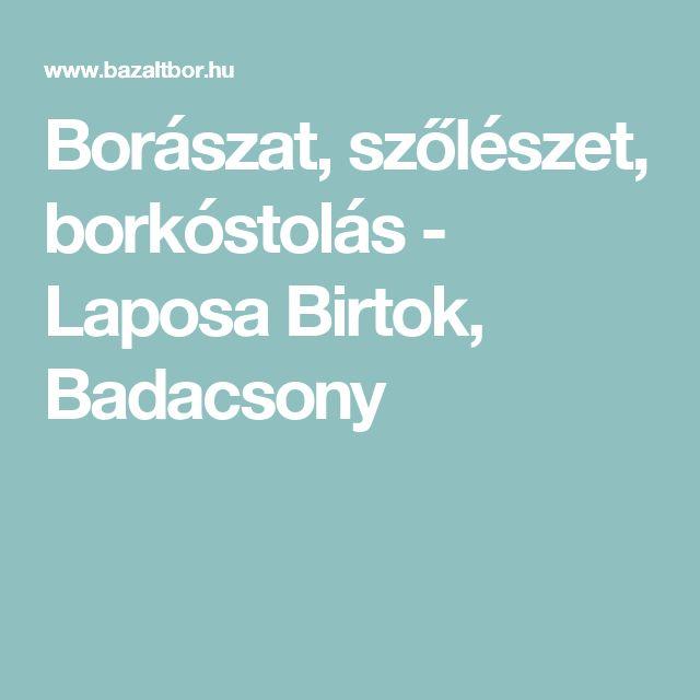 Borászat, szőlészet, borkóstolás - Laposa Birtok, Badacsony