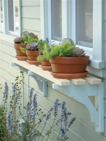 Cute variation on a window box! A nice shelf to match architectural details and display pots & plants that compliment house style & decor.