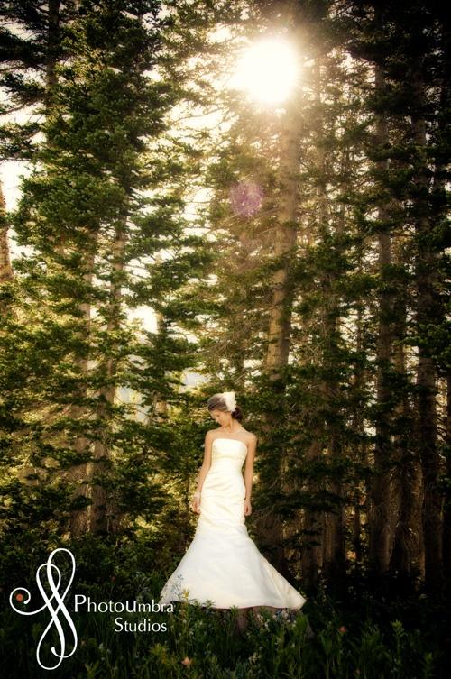 Outdoor wedding pic