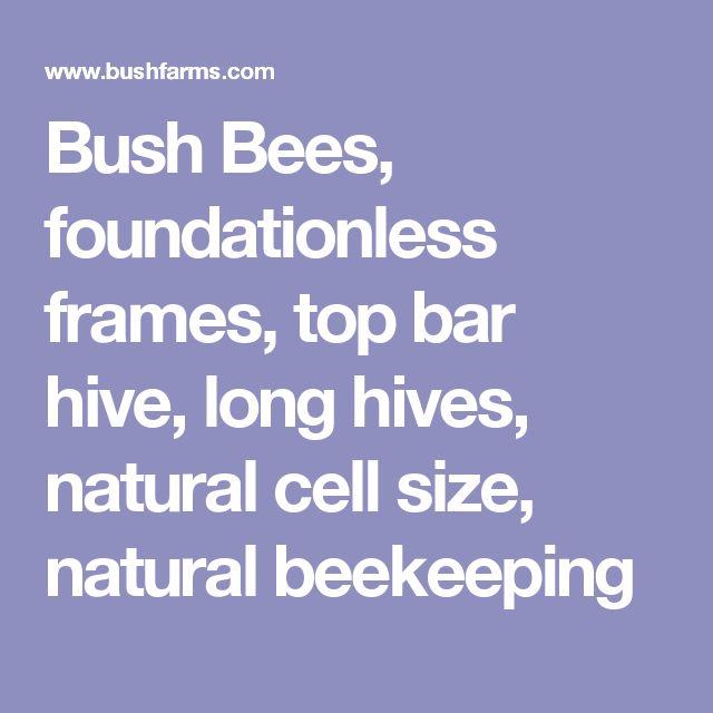 Is Beekeeping A Natural Resource System