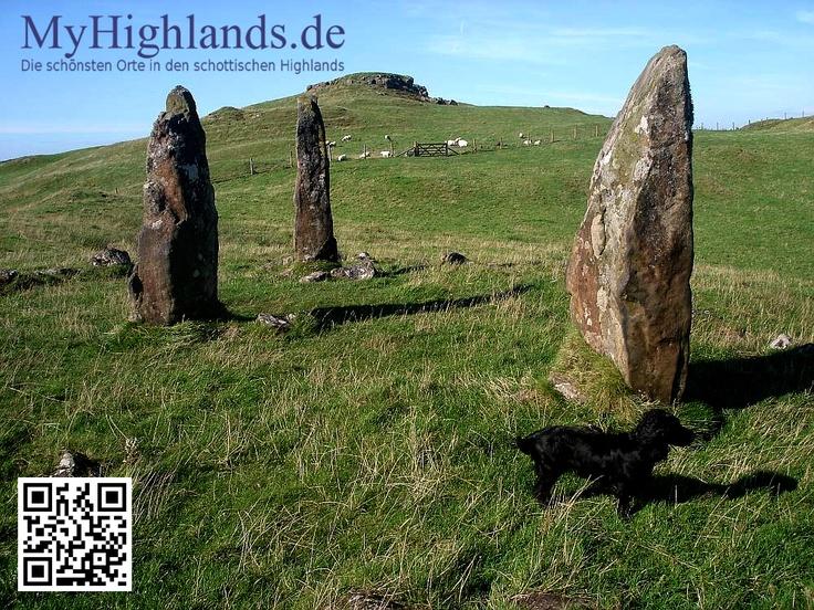 Der Hund von Glengorm Castle begleitet manch Spaziergänger geduldig bei seinem Ausflug. Glengorm Castel ist auf Mull, ein interesanter Herrensitz mit gruseliger Geschichte