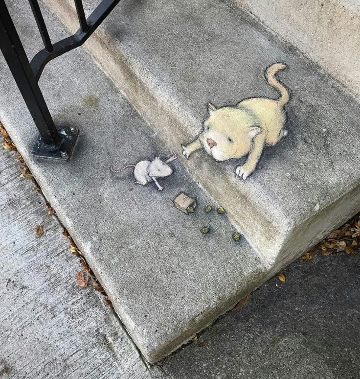 David Zinn - New Work                                                                                                                                                                                 More