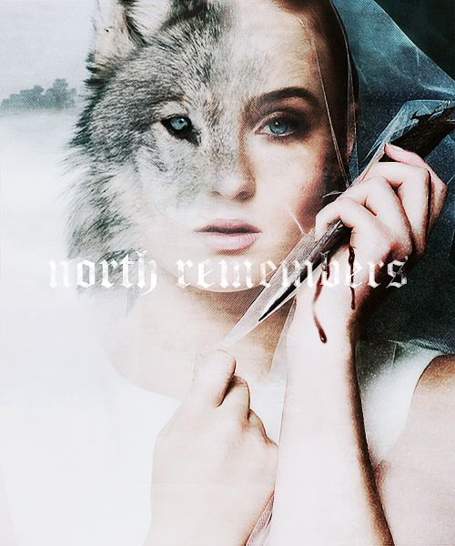 The North remembers   Sansa   Game of Thrones