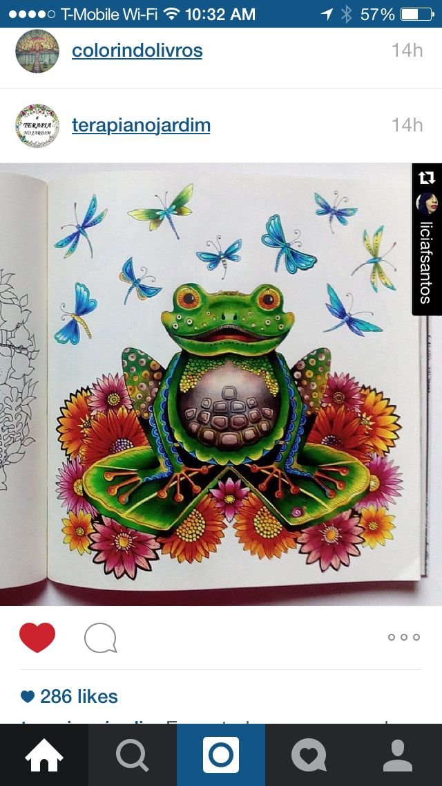 318 Best Images About Millie Marottas Animal Kingdom On