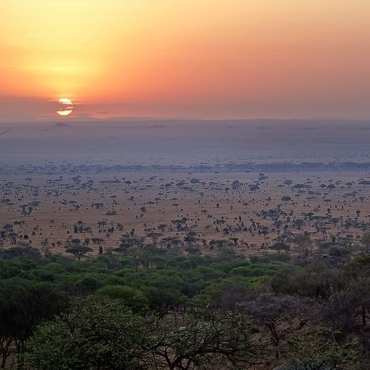 Serengeti Pioneer Camp - home to vast landscapes and prolific amounts of game
