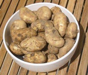 Šťáva z brambor