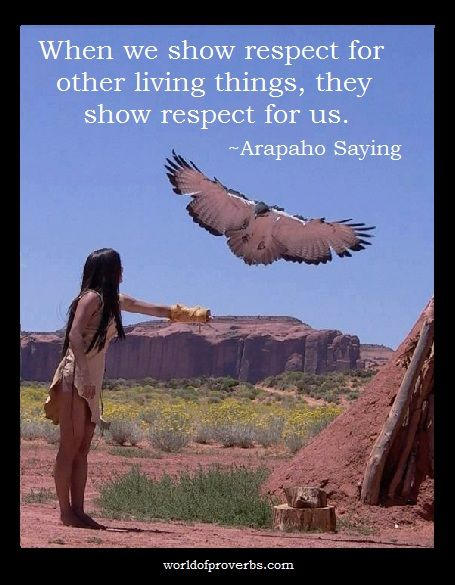 World of Proverbs - Famous Quotes: When we show our respect for other living things, they respond with respect for us. ~ Native American Proverb, Arapaho [19461]
