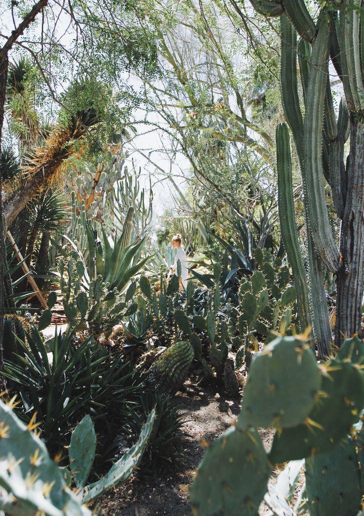 Moorten Botanical Garden Via Mija Mija Pinterest Gardens And Plants