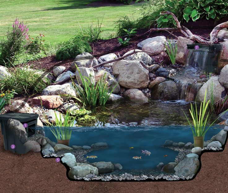 805 best dyi koi pond images on pinterest backyard ponds for Koi pond kits