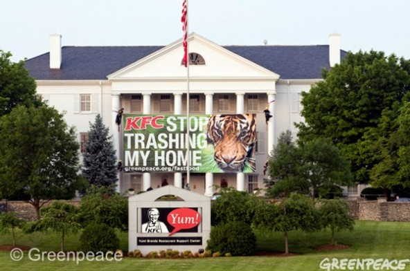The skilled climbing artists on team Greenpeace (seriously, climbing stuff must be a requirement on the application) have done it again; scaling the White House-lookalike headquarters of KFC in Louisville, Kentucky and unfurling a banner decrying the company's role in rainforest destruction.