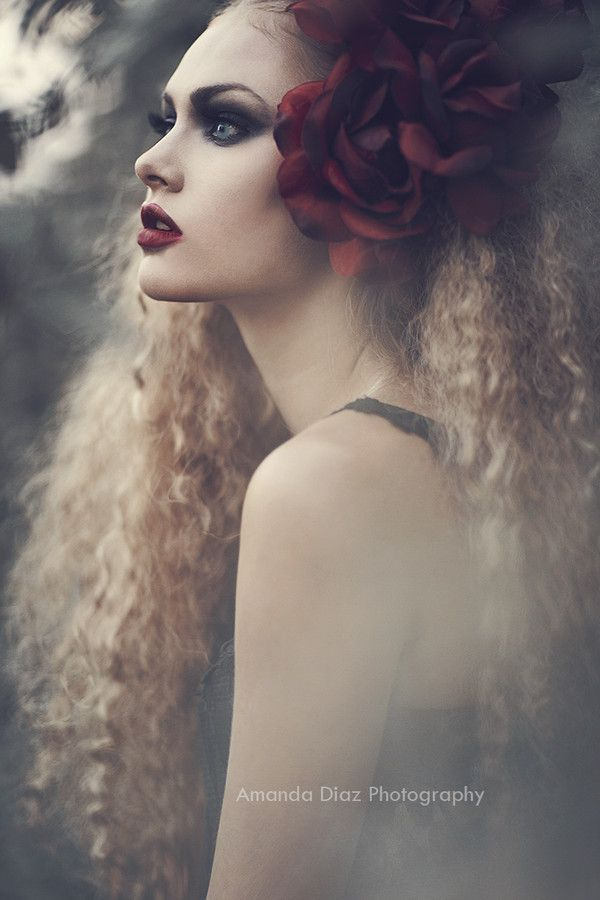 Rose by Amanda Diaz on 500px   ~Amanda Diaz photography www.amandadiaz.com  I love her fashion photography. It tends to have a fairy tale edge to it and be a little dark in mood. Because I don't shoot that mood I am attracted to it.