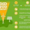 infographic-learn-how-solar-panels-work-and-why-you-should-install-them-for-your-home | Inhabitat - Green Design, Innovation, Architecture, Green Building