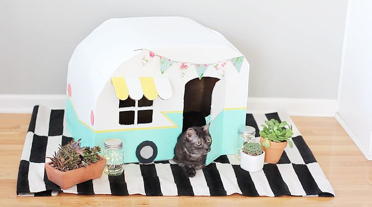 How To Make A Vintage Kitty Camper Out Of Cardboard Boxes | Cuteness.com