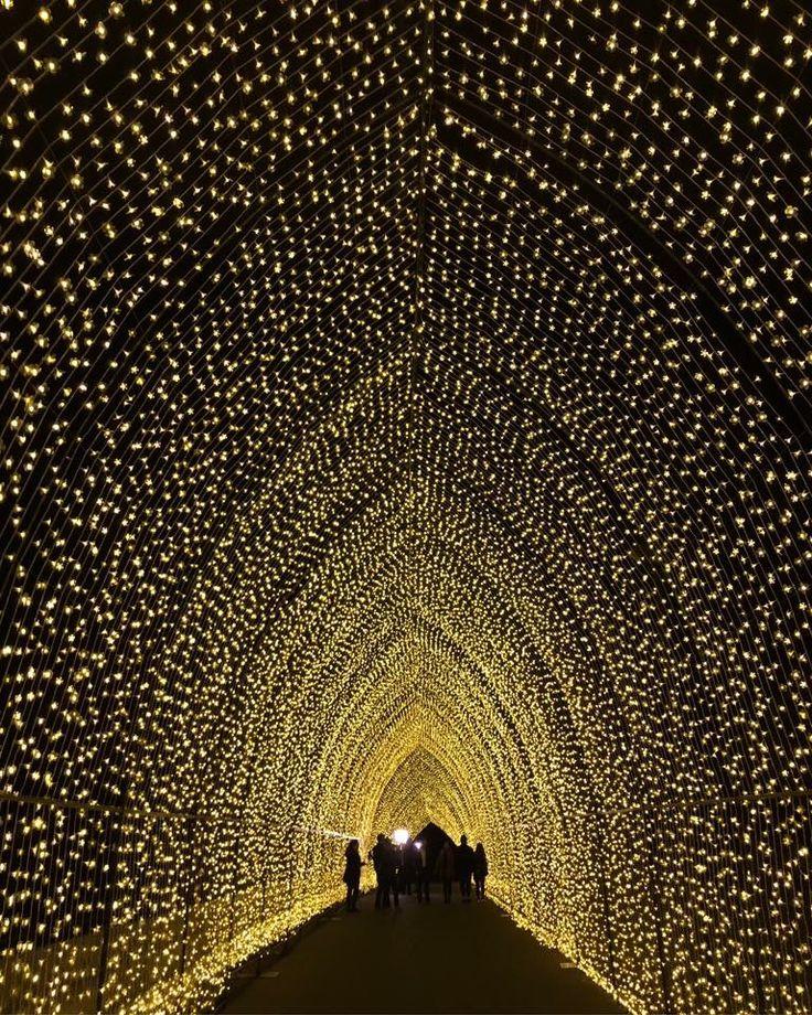 Cathedral of light   vivid sydney 2016