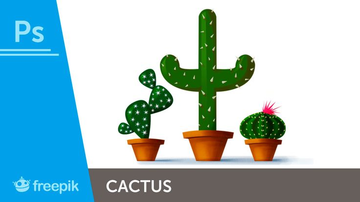 How to create different cactus Illustrations in Adobe Photoshop