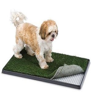 Artificial grass for pets designed to be fun, it is easy to clean and safe for pets. It is specifically for dogs. Both you and your pets will love the benefits of having an artificial grass.