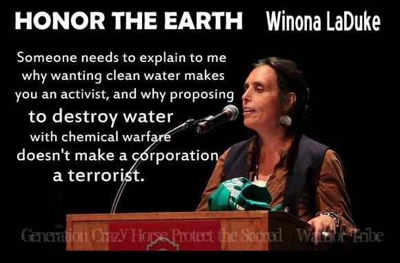 Someone need to explain to me why wanting clean water make you an activist, and why proposing to DESTROY WATER with chemical warfare doesn't make corporation a terrorist - Winona LaDuke