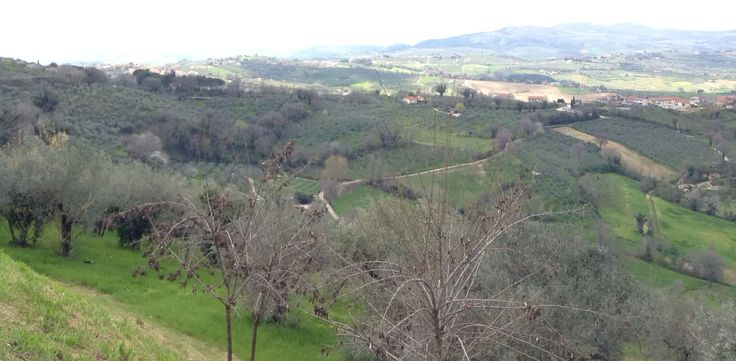 View from Montefalco