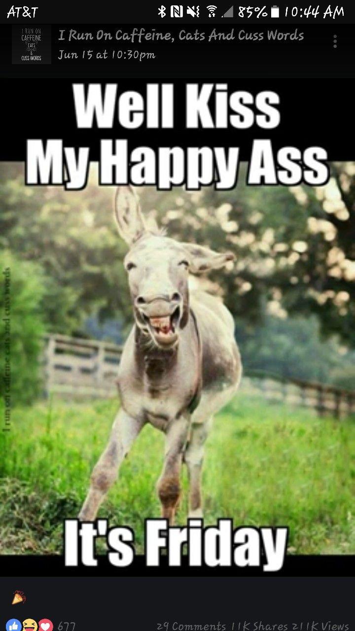 Wenn Der Freitag Ein Tier Wäre   Lustiger Esel   Endlich Freitag    WitzeMaschine