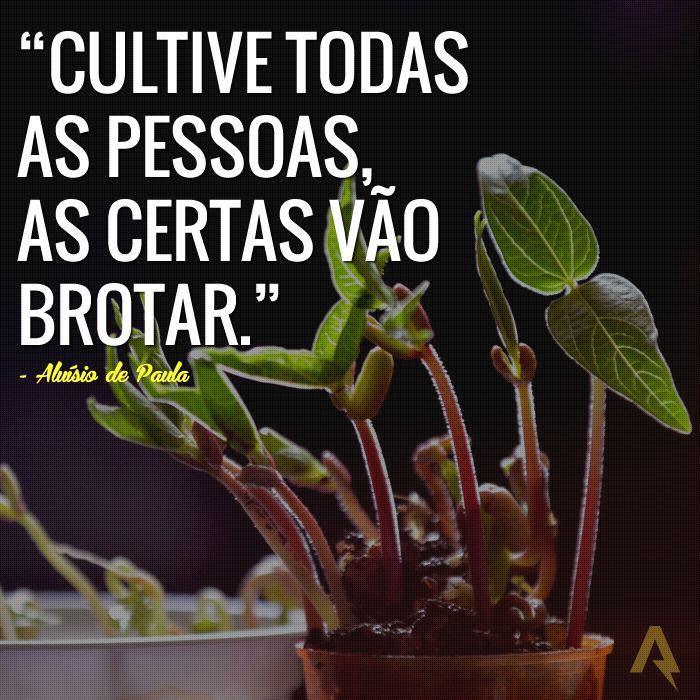 Cultive todas as pessoas, as certas vão brotar. – Aluisio de Paula