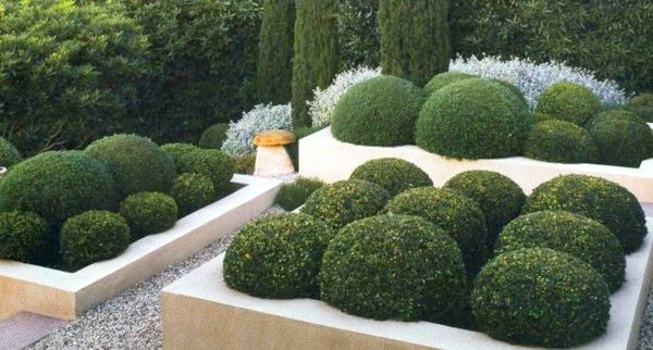SCULPTED SHRUBS | Trimmed hedges evoke the magic of an English garden. For a twist on this classic technique, try planting the shrubs inside of the flowerbeds, then tame them into sphere-like forms for a contemporary look that's full of charm. [from Down to Earth Landscapes]
