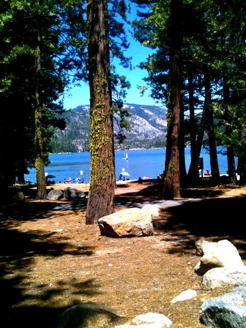 Pinecrest, CA Our family camping spot for over 30 years