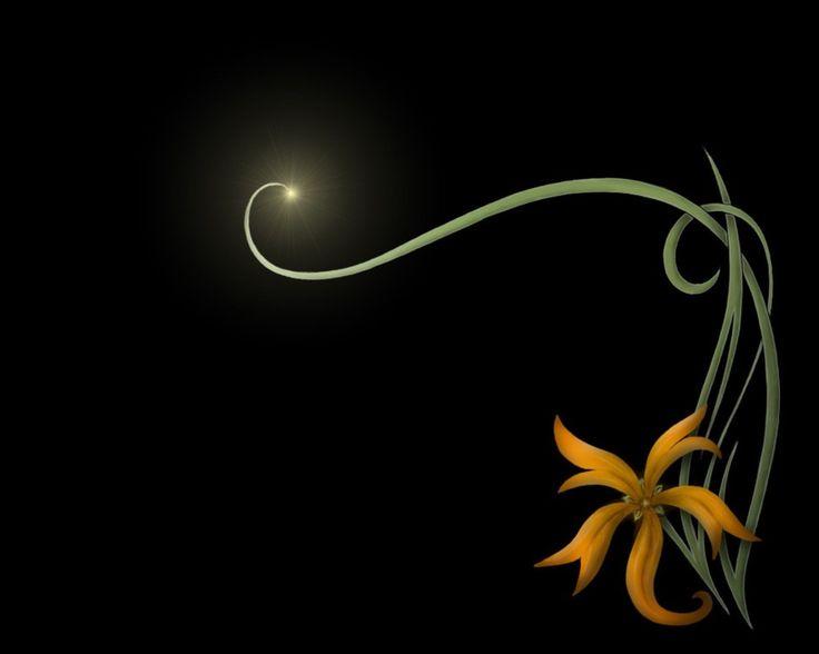Abstract Flower Desktop Wallpaper HD wallpaper background