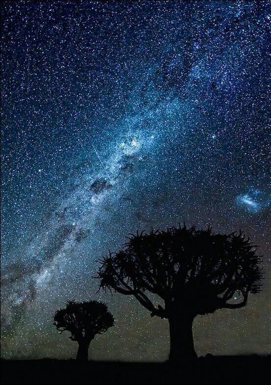 Night sky over the sahara.