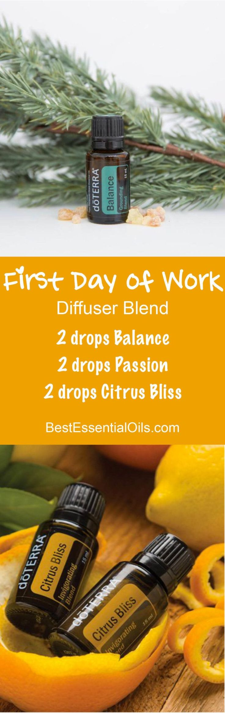 First Day of Work doTERRA Diffuser Blend