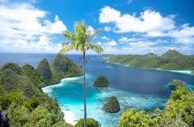 Pulau Raja Ampat di Papua yang terkenal dengan keindahan bawah tanahnya :). #PINdonesia #OndeMonday