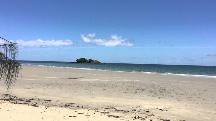 Tony's Tropical Tours Daintree Rainforest Beaches #daintreebeaches #queenslandbeaches #australia #daintreerainforest