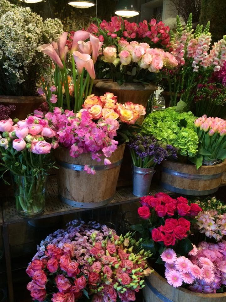 Amazing Ivan Bednárik   Flower Shop