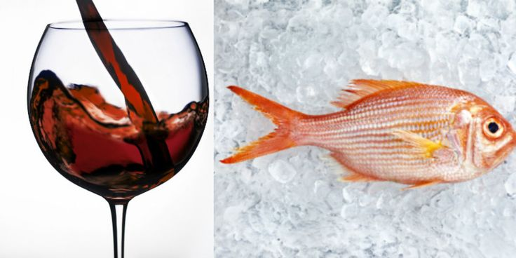 15 best pairing perfectly food wine images on for Red wine with fish