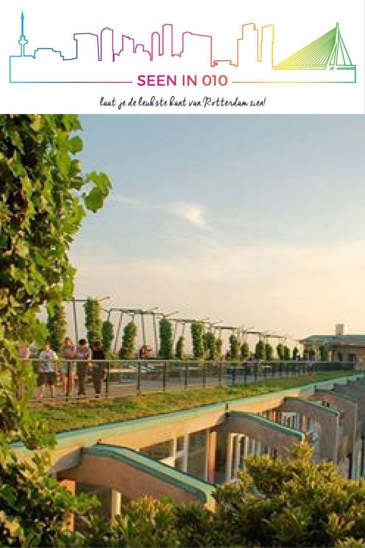 Groot Handelsgebouw uitzicht op Rotterdam  #Rotterdam #Groothandelsgebouw #Handelsgebouw #Roffa #010 #Seenin010 #uitzicht #Tourist