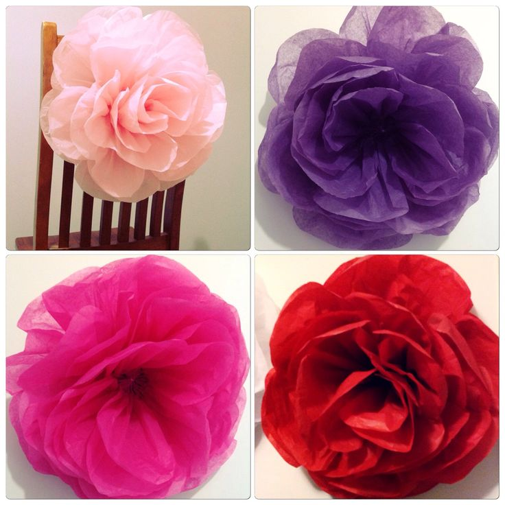 A personal favourite from my Etsy shop https://www.etsy.com/au/listing/245715934/set-of-5-x-large-paper-roses-bulk
