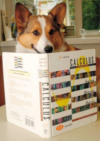 """This May 20, 2003 photo shows Elvis, the pet corgi of Hope professor Tim Pennings, with a calculus textbook, in Holland, Mich. Elvis, a dog that traveled the country making the presentation """"Do Dogs Know Calculus?"""" aimed at demonstrating math principles to students, has died. Photo: The Sentinel, Brian Forde"""