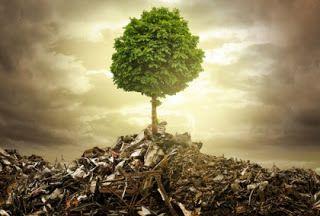 TU COACH VITAL: La metáfora del cubo de basura