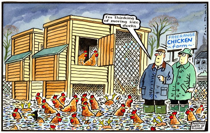4 February 2014 - the floods are back