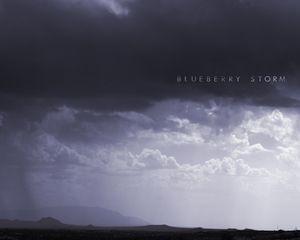 Blueberry storm