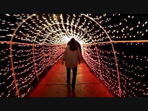 Festival of Lights, Stephen Foster State Park, Dec  2014