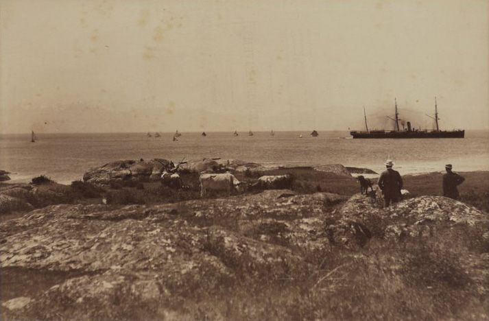 View from the Beacon Hill, Victoria, looking South toward Port Angeles (Washington) and shows a steamship and sailing boats in waters of the Juan de Fuca Strait, with two men, a dog, and a group of cows in the foreground. Circa 1885.