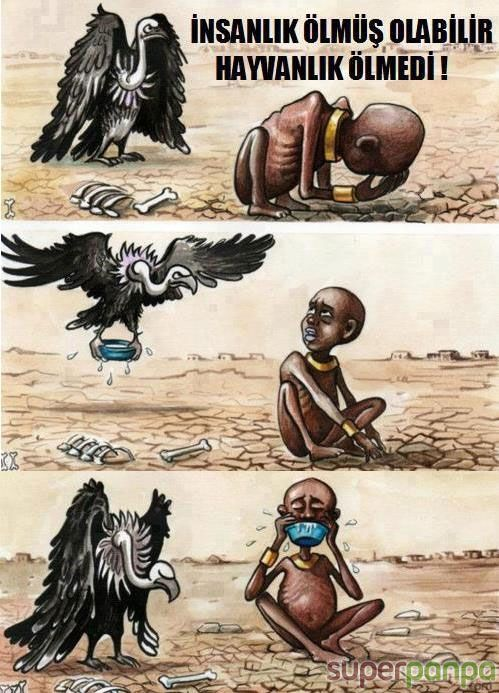 İnsanlık öldüyse, hayvanlık ölmedi..